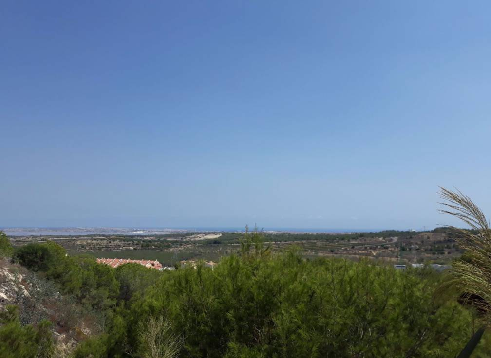 Sold - Detached Villa - Orihuela Costa - San Miguel De Salinas
