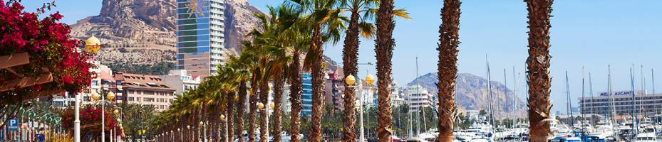 Properties for sale in Alicante